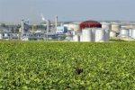 biocarburant4321